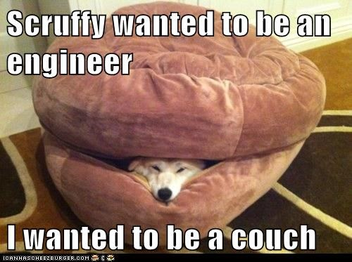 Scruffy wanted to be an engineer  I wanted to be a couch