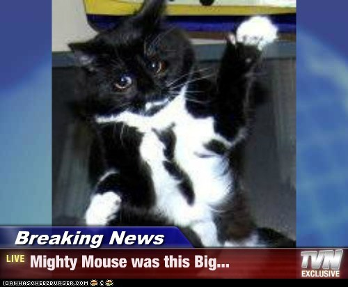Breaking News - Mighty Mouse was this Big...