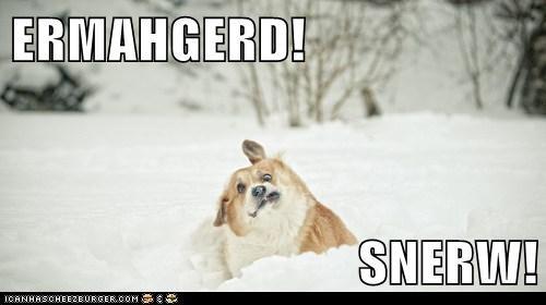 ERMAHGERD!  SNERW!