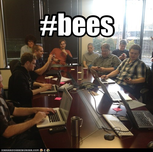 Tweet me about #bees