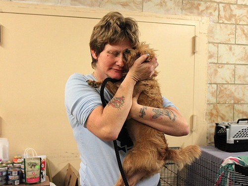 Around the Interwebs: Lost and Found! Hurricane Sandy Pets Reunite with Their Owners