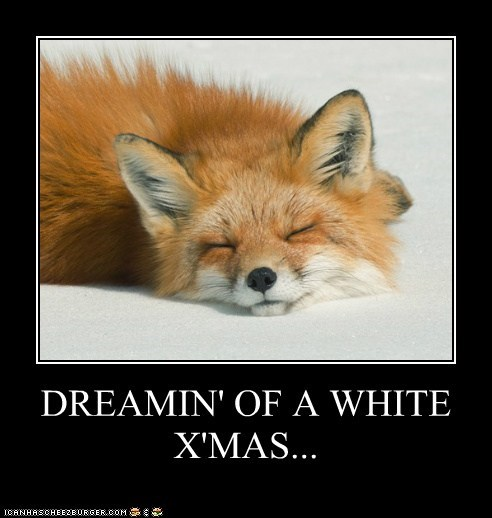 DREAMIN' OF A WHITE X'MAS...