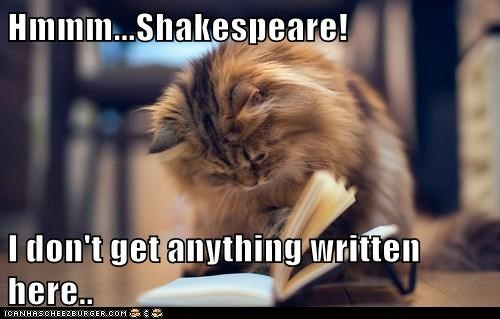 Hmmm...Shakespeare!  I don't get anything written here..
