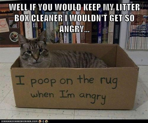 WELL IF YOU WOULD KEEP MY LITTER BOX CLEANER I WOULDN'T GET SO ANGRY...