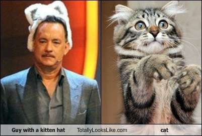 Guy with a kitten hat Totally Looks Like cat