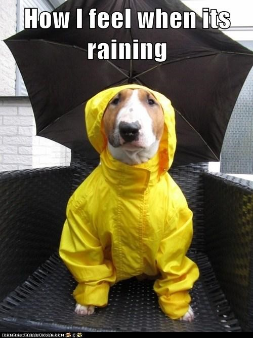 How I feel when its raining