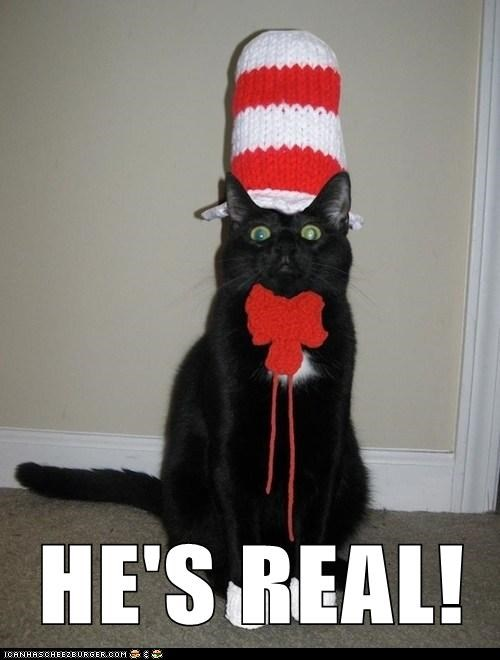 cat in the hat,dr seuss,captions,Cats