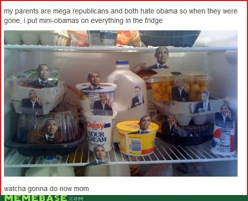 Republicans,obama,obamabombed,politics
