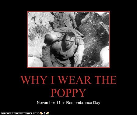 WHY I WEAR THE POPPY