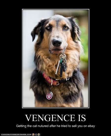 VENGENCE IS