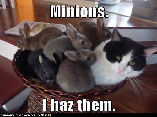 Minions.   I haz them.