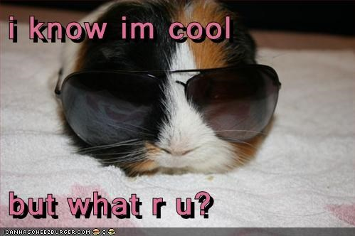 i know im cool  but what r u?