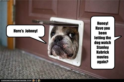doggie door,dogs,bulldog,stanley kubrick,The Shinning