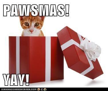 PAWSMAS!  YAY!