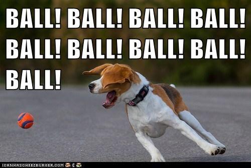 BALL! BALL! BALL! BALL! BALL! BALL! BALL! BALL! BALL!