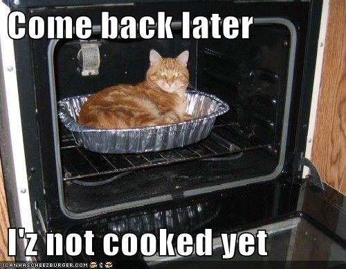 Come back later  I'z not cooked yet