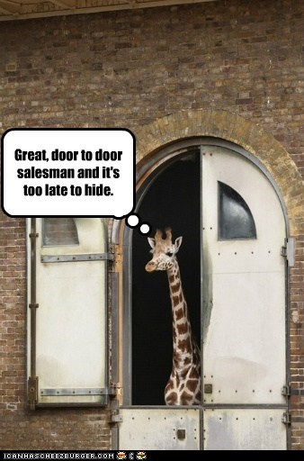 door,door to door salesman,great,hide,too late,giraffes