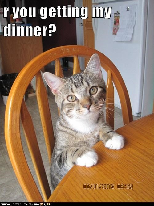 r you getting my dinner?
