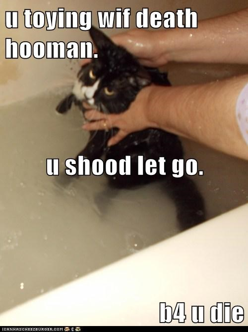 u toying wif death hooman. u shood let go. b4 u die