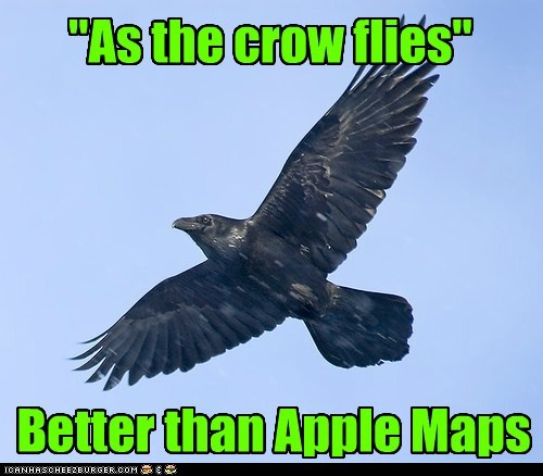 better than,crows,idiom,apple maps,as the crow flies
