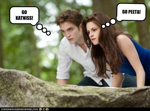 TWIGHLIGHT MEETS THE HUNGER GAMES