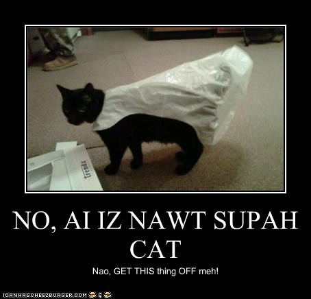 NO, AI IZ NAWT SUPAH CAT