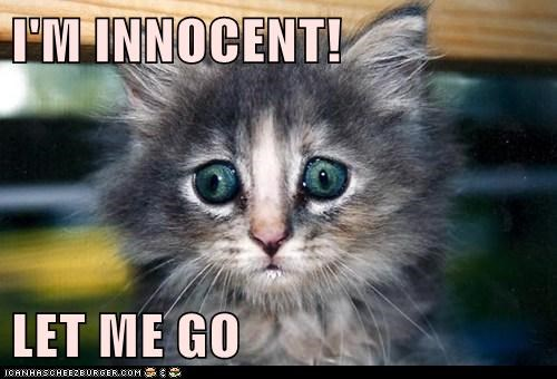 I'M INNOCENT!   LET ME GO