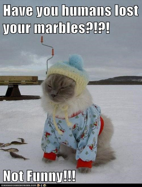 Have you humans lost your marbles?!?!  Not Funny!!!