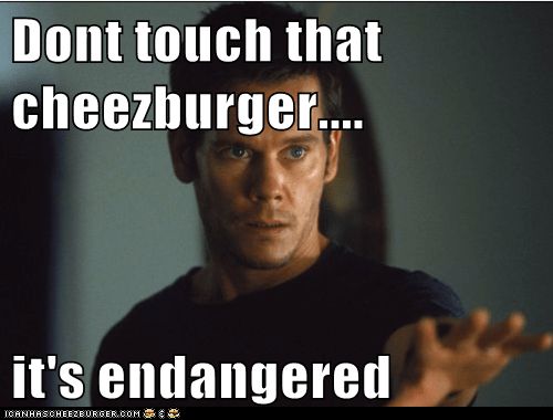 Dont touch that cheezburger....  it's endangered