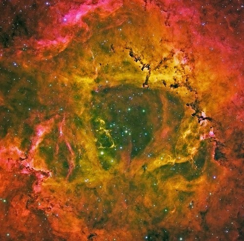 The Center of the Rosette Nebula