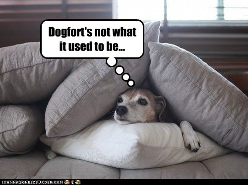Dogfort's not what it used to be...