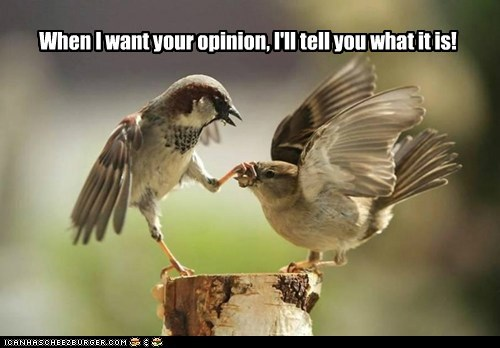 When I want your opinion, I'll tell you what it is!