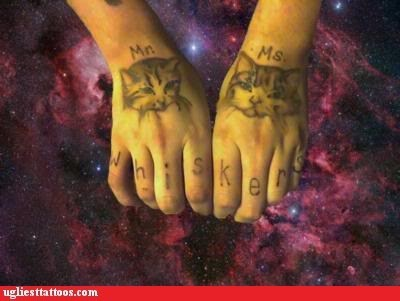 Cat Hands Floating in Outer Space