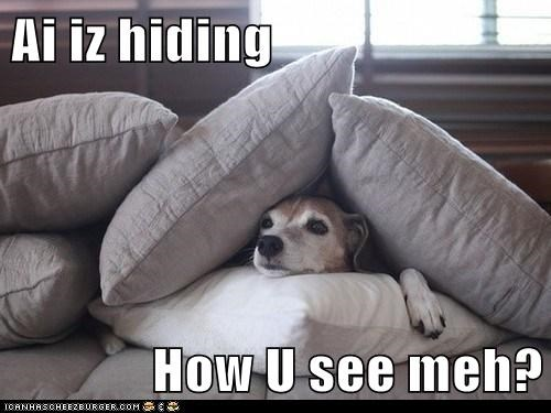 Ai iz hiding  How U see meh?