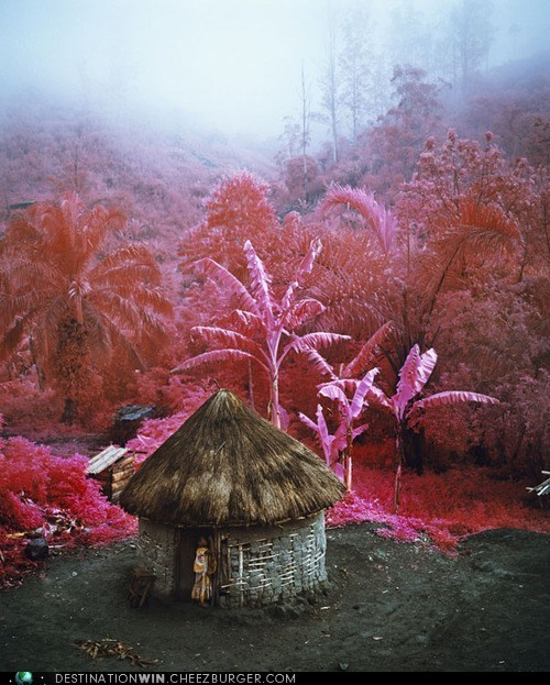 Riveting Pink Infrared Landscapes of Congo
