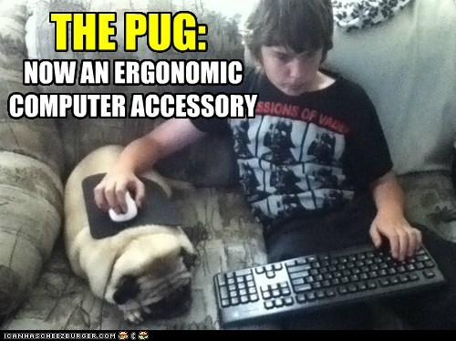 dogs,pug,accessory,computer,mouse pad