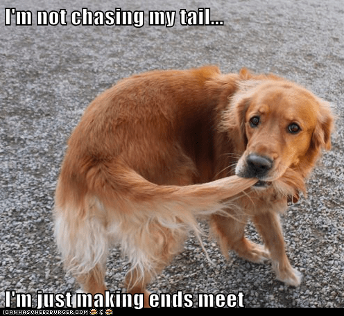 I'm not chasing my tail...  I'm just making ends meet