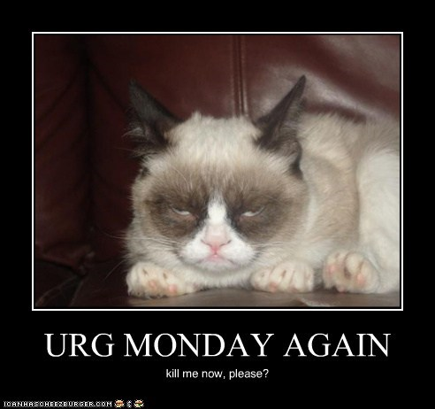 URG MONDAY AGAIN