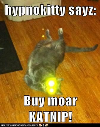 hypnokitty sayz:  Buy moar KATNIP!