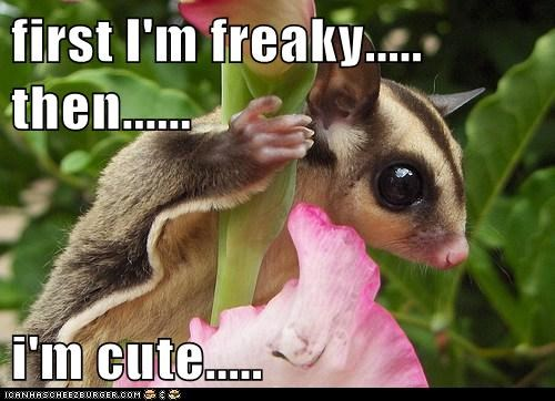 first I'm freaky..... then......  i'm cute.....