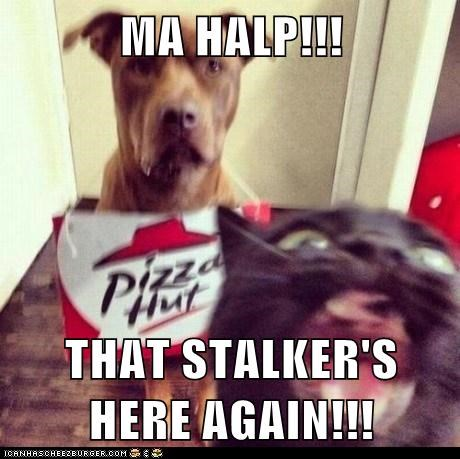 MA HALP!!!  THAT STALKER'S HERE AGAIN!!!