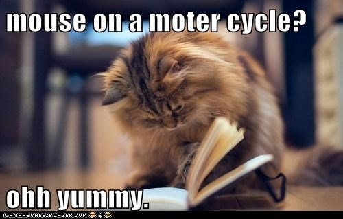 mouse on a moter cycle?  ohh yummy.