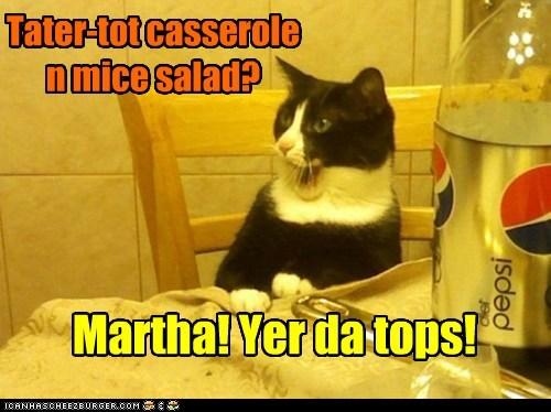captions,dinner,love,mice,food,Cats,casserole,salad
