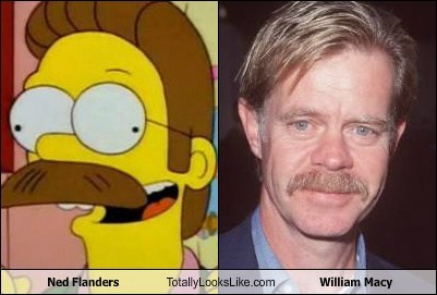 actor,TLL,ned flanders,william h macy,the simpsons,funny