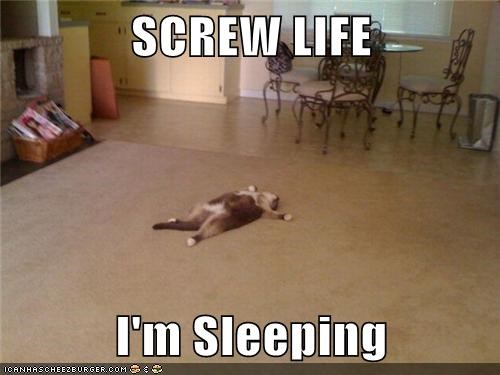 SCREW LIFE  I'm Sleeping