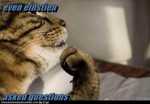 even einstien   asked questions