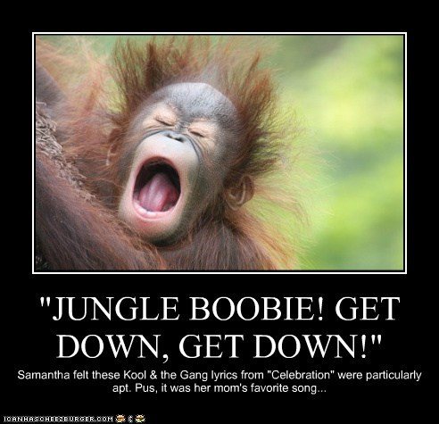 """JUNGLE BOOBIE! GET DOWN, GET DOWN!"""