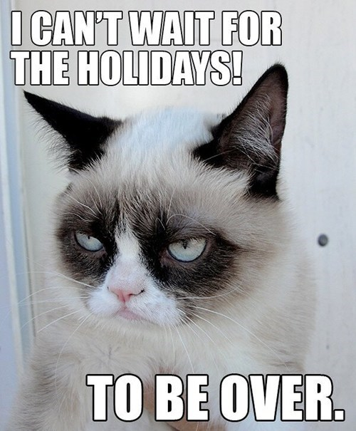 christmas,thanksgiving,cant-wait,Memes,grumpy,Grumpy Cat,tard,Cats,holidays
