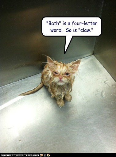 """Bath"" is a four-letter word.  So is ""claw."""