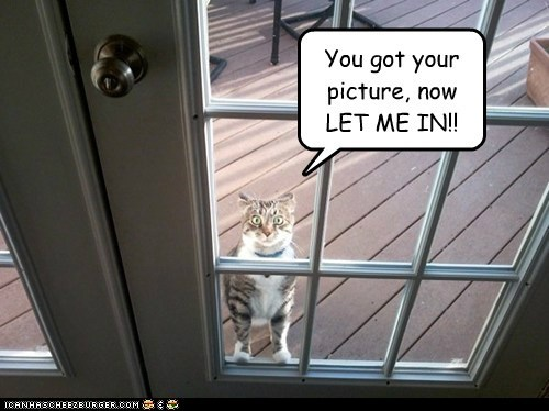 You got your picture, now LET ME IN!!